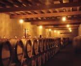 Les différents types de caves à vin