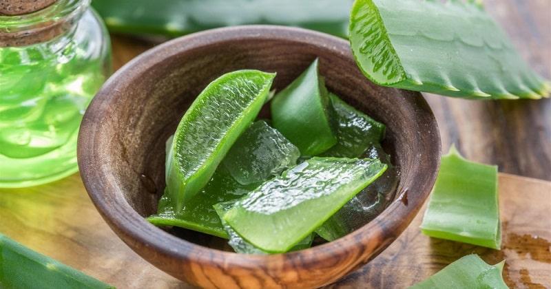 Comment utiliser l'aloe vera